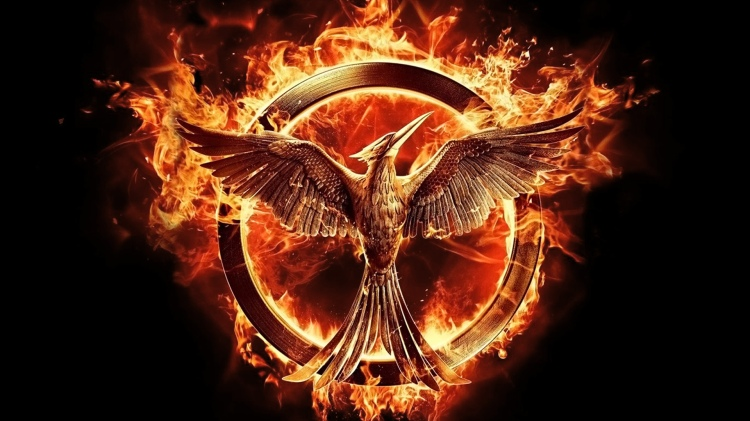 the-hunger-games-mockingjay-part-1-53b19e0a32efb-which-hg-theory-was-your-favorite-what-did-you-think-of-mockingjay-part-1